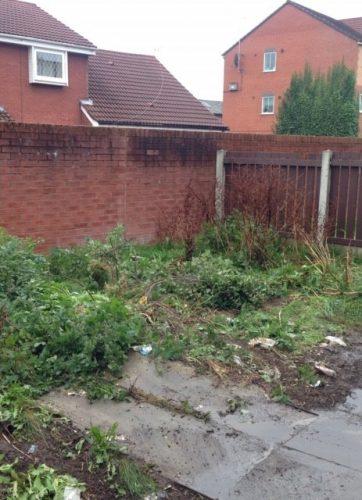 after- garden
